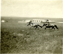 Mongolia, Letra Salvaje